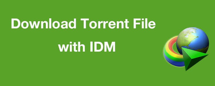 How to Download Torrent File with IDM